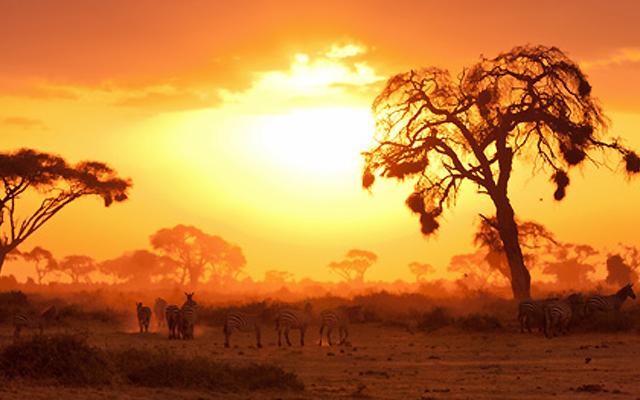 アフリカの夕日